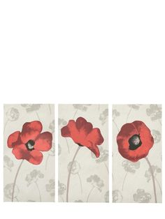 Poppy Split Hand Finished Canvas Wall Art Set (Set of 3) | Very.co.uk