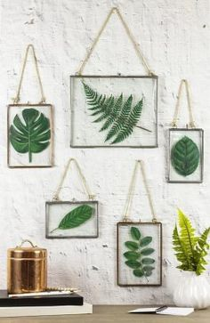 [orginial_title] – DecoArt Inc. Framed Faux Pressed Leaves — Create an upscale look without the cost. Framed Faux Pressed Leaves — Create an upscale look without the cost. Diy Wand, Mur Diy, Leaf Projects, Wood Projects, Decoration Plante, Ideias Diy, Deco Floral, Home And Deco, Plant Decor