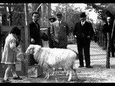 Atatürk Orman çiftliği.  ⚓