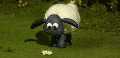 Shaun the sheep Animated Cartoons, Funny Cartoons, Gifs, Cartoon Images, Cartoon Drawings, Kids Learning Apps, Clay Animation, Timmy Time, Glitter Gif