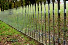 wow, crazy.  a mirror fence.