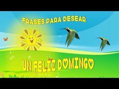 FELIZ DOMINGO, FRASES PARA DESEAR UN FELIZ DOMINGO - YouTube