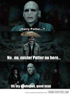funny Harry Potter Mexican sombrero on imgfave
