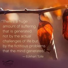 There is a huge amount of suffering that is generated not by the actual challenges of life, but by the fictitious problems that the mind generates. ⊰❁⊱ Eckhart Tolle