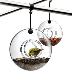 The ball-shaped Eva Solo bird feeder is both a decorative feature and a popular feeding place among birds all year round. The mouth-blown glass feeder is easy to hang with the accompanying hanger - on a branch or under the eaves.