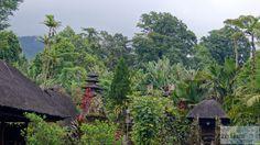 - Check more at https://www.miles-around.de/asien/indonesien/bali-mystische-tempel-und-gruene-reisfelder/,  #Affen #Bali #Indonesien #Natur #Reisebericht #Tempel #Wasserfälle