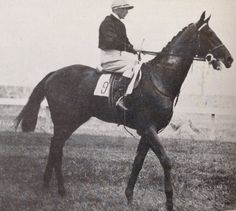 FAIRWAY (GB) Br c 1925, Phalaris - Scapa Flow. 15 starts, 12 wins, 1 placing. The brilliant colt of the then Lord Derby, he started hot favourite for the 1928 Epsom Derby but he became highly agitated by the crowds and failed to fire, finishing ninth. Winner 1927 Coventry Stakes, 1928 St Leger etc. Retired after injury at five, he was a successful sire topping the Sires Lists four times and passed away In late 1946.