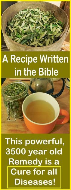 A Recipe Written in the Bible: This powerful, 3500 year old Remedy is a Cure for all Diseases! – Let's Tallk