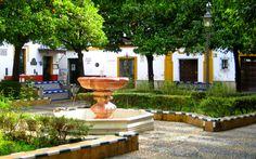 ¡Buenos días a tod@s desde #Sevilla! - Barrio de Santa Cruz.