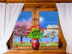 Puzzle Spring in the window and outside the window - online jigsaw puzzle games. Jigsaw puzzles, puzzle games for kids. Play free jigsaw puzzle Spring in the window and outside the window. Spring Pictures, Flower Pictures, Free Pictures, Free Images, Flora Flowers, Dream Garden, Beautiful Pictures, Spring Nature