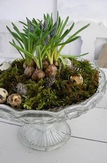 fantastic idea - i have the perfect lidded stand for this!