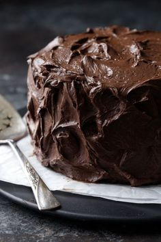 Your new favorite chocolate cake recipe is here! Dark, fudgy and ultra-moist chocolate layer cake slathered with a dark chocolate fudge frosting that's ultra rich and not too sweet. Dare I say it's the best chocolate cake, ever? Ultimate Chocolate Cake, Best Chocolate, Chocolate Recipes, Chocolate Tarts, Theobroma Cacao, Chocolates, Chocolate Fudge Frosting, Frozen Cake, Cake Recipes