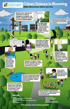 Environmental Educators poster I created | Science | Pinterest ...