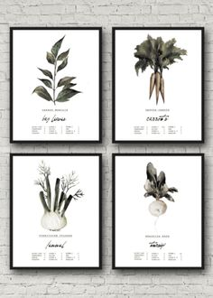 Premium Canvas Prints |  Vegetable Kitchen Decor Artwork  Bring some beautiful artwork into your kitchen and dining room with these beautiful watercolor prints. Printed on premium canvas.