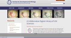 Digital Library of Life Sciences es una página web de la Sociedad de Biología del Desarrollo, que contiene diferentes recursos.