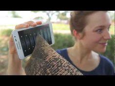 Elephant knows its way around a smartphone
