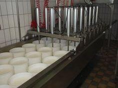 Elaboración de queso en Suiza http://www.oberbergkaeserei.ch/