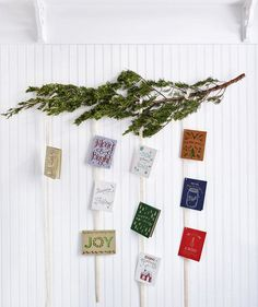 A mounted bough of juniper (or another evergreen branch from the yard or a tree farm) turns holiday cards into wall art instead of counter clutter. Tie strands of wide ribbon about 12 inches apart, and clip on the cards using white metal brads (sold at office-supply stores).