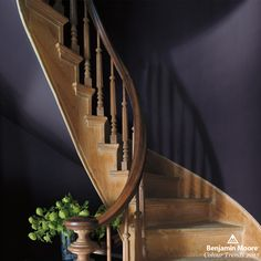 Benjamin Moore Shadow (2117-30) | As Benjamin Moore's 2017 Colour of the Year, it makes a bold statement in any space. Used here to accent a light-wood staircase, the deep amethyst hue evokes a sense of drama and nostalgia. #paint