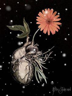 """""""Corazón herido""""  Está lastimado, muy lastimado, pero segundo a segundo, minuto a minuto, hora tras hora y día tras día, así lentamente, irá renaciendo desde las cenizas y el polvo... Hasta lograr florecer...  No importa cuánto tiempo tenga que pasar. Lo logrará, ten por seguro que lo logrará. ¡Renacerá entre cenizas y volverá a florecer! Karolyne"""