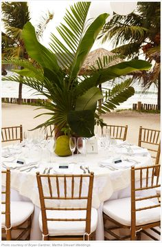 Beach Wedding Reception Decor. The problem with having these as centerpieces is that they would make it difficult for people to talk to each other across the table.