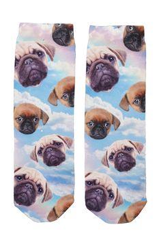 Cissi sock rainbow dog