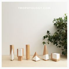Why honor a job well done with a trophy that's not? Trophyology redefines recognition with unique modern awards, trophies, and plaques. We rethink what an award can be and should be and pair innovative design, unconventional materials, and outstanding craftsmanship to help you honor your best in style. Proudly designed and made in the USA.