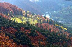 All colors of autumn in the Ukrainian Carpathians