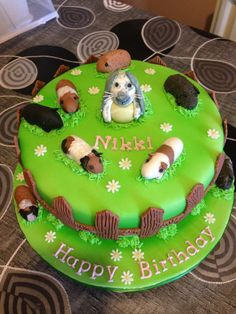 Guinea pigs and rabbit cake