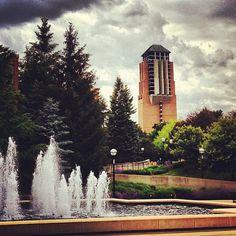 Beautiful shot of North campus!