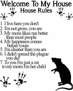 Another rattie rules chart. Yeah ! This will work for Sugar bear owners too, love it !