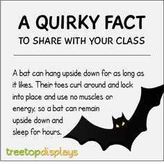 A quirky fact about bats to share with your class - from Treetop Displays. Visit our TpT store for printable resources by clicking on the provided links. Designed by teachers for Pre-Kindergarten to Grade. Bat Facts For Kids, Animal Facts For Kids, Fun Facts About Animals, Facts About Bats, Teaching Kids, Kids Learning, Science Classroom, Classroom Resources, Pre Kindergarten