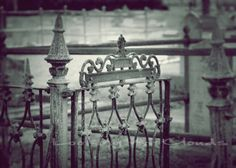 Spooky old cemetery wrought iron fence and gate by LookingAtClouds, Etsy