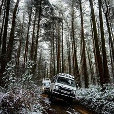 Ramble through the forest. Loving this pic by @_campervanculture.com_   #campervanster #campervan #camping #syncro #vanlife #travel #offroad by campervanster
