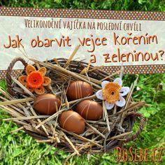 Velikonoční vajíčka na poslední chvíli: Jak obarvit vejce kořením a zeleninou? Pumpkin, Easter, Decoration, Spring, Ideas, Decor, Pumpkins, Easter Activities, Decorations
