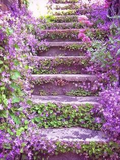 Lilac stairways leading to beautiful gardens. Lilac stairways leading to beautiful gardens.
