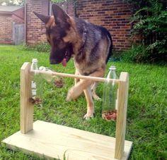 dog house diy Bark City Doggy Daycare: DIY Enrichment Games For Your Dog Homemade Dog Toys, Diy Dog Toys, Dog Treat Dispenser, Dog Backyard, Dog Enrichment, Enrichment Activities, Family Activities, Dog Playground, Diy Dog Crate