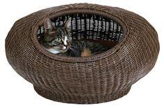плетеные диванчики для кошек. Обсуждение на LiveInternet - Российский Сервис Онлайн-Дневников