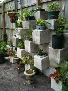container garden - another cinder block planter