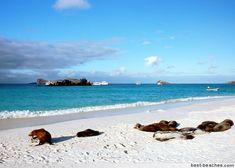 Ecuador small beach Towns   Best Beaches in Ecuador - Top Ecuador Beach