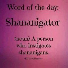 *Shenanigator* (this kills me a little, but it's still funny)