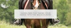 Riding into the backcountry far away from roads and civilization—and even emergency help if you need it—demands a partnership between horse and rider like no other. Here are some very helpful guidelines for taking your horse into the backcountry! | Your Horse Farm #yourhorsefarm #yhf #equestrian #blog #lifestyleblog #horseriding #horses