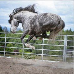 Jump for joy! (reason to make sure your back cinch isn't too loose!)