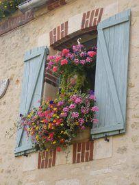 coordinating flowers in hanging basket & windowsill
