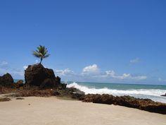 Praia de Tambaba- João Pessoa- Paraiba