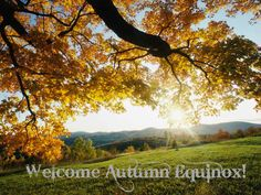 Welcome Autumn Equinox!