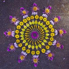 Mandala fleuri : tons jaune & violet