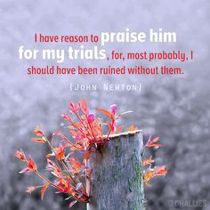 "John Newton - ""I have reason to praise Him for my trials. Newton Quotes, Wise Quotes, Inspirational Quotes, Sinner Saved By Grace, John Newton, Blessed Assurance, Reformed Theology, Thanksgiving Quotes, Spiritual Wisdom"