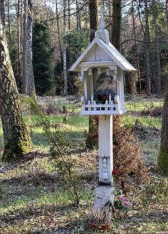Polskie kapliczki - kapliczka w głębi kobiórskiego lasu