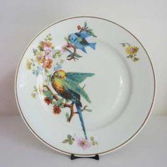 unique plates